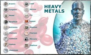 How to Detox from Heavy Metals and Mercury – Detox Foods