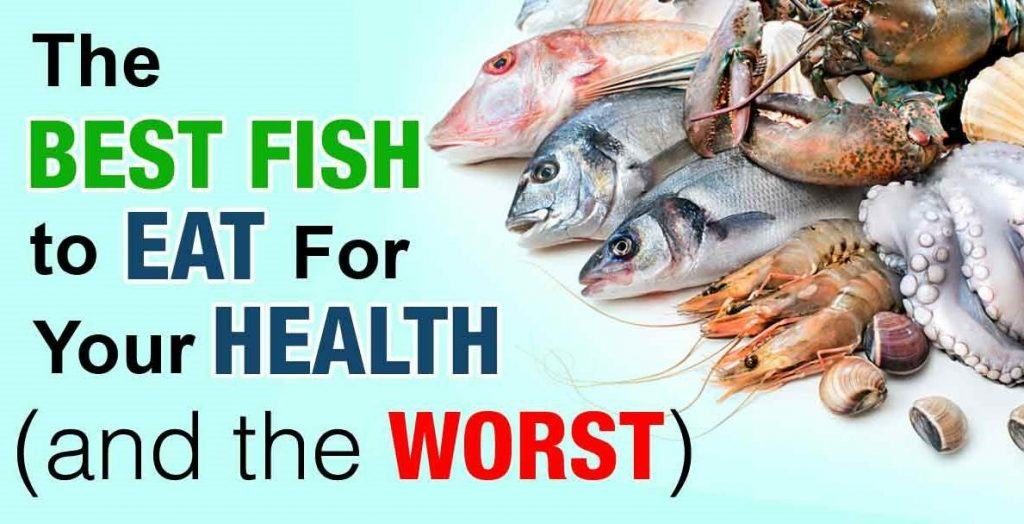 Healthiest fish to eat for weight loss south beach phase for Healthiest fish to eat for weight loss