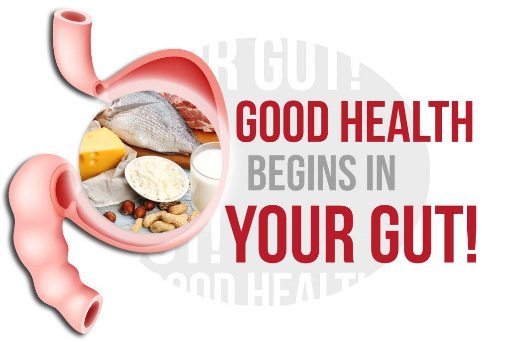 good-health-begins-in-your-gut