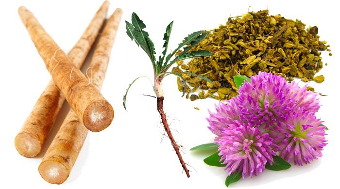top-four-liver-detox-herbs