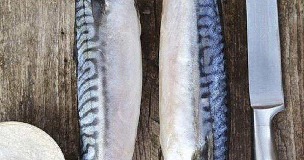 What you need to know about mercury in fish and shellfish for Fish with least mercury