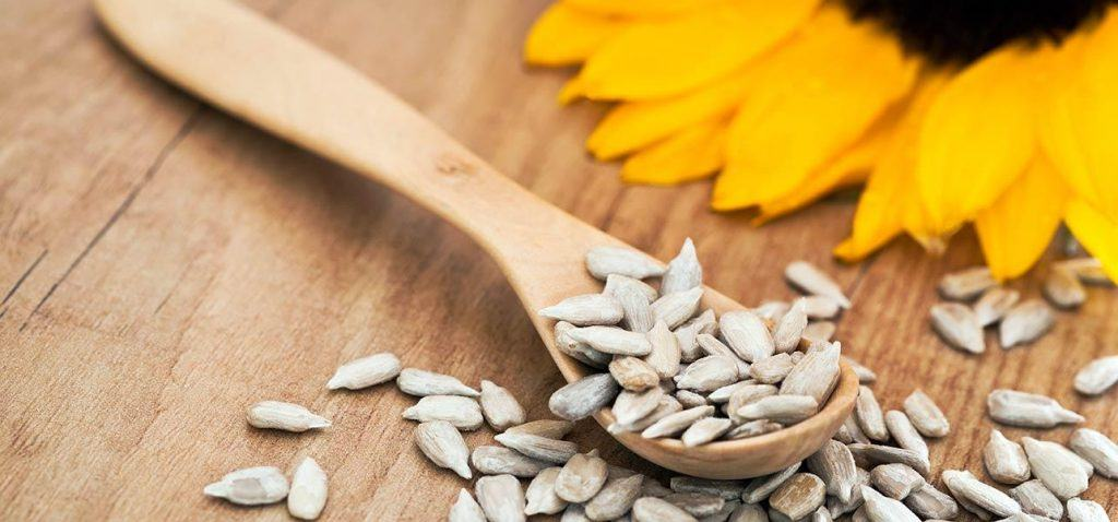 4979-Benefits-Of-Sunflower-Seeds-For-Skin-Hair-And-Health