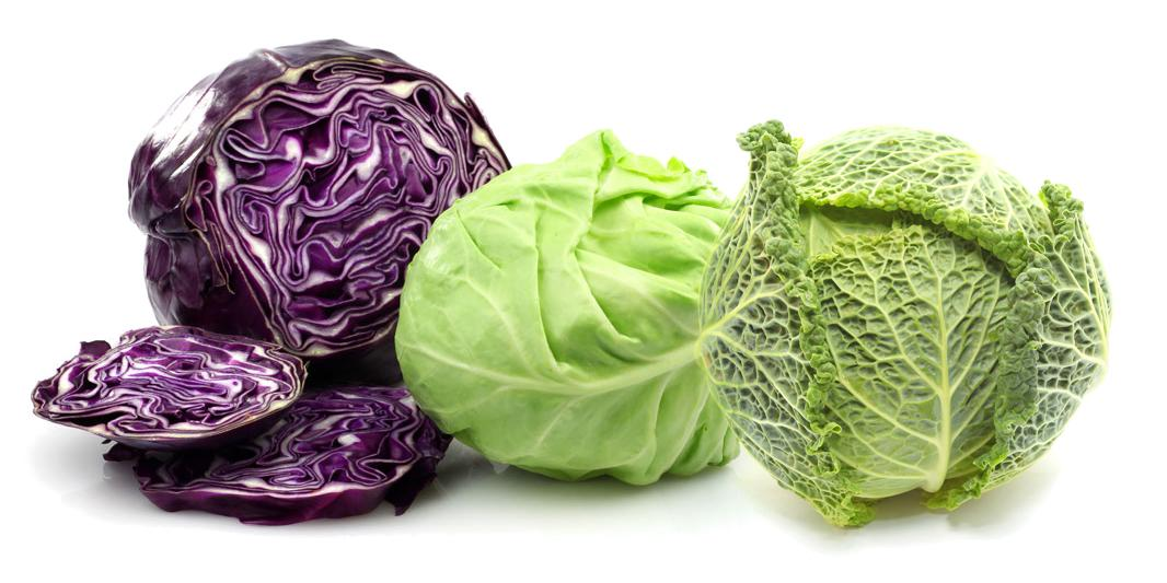 different-types-of-cabbages-health-benefits-cabbage